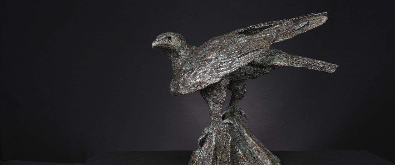 Bruce Little, bronze sculpture, eagle