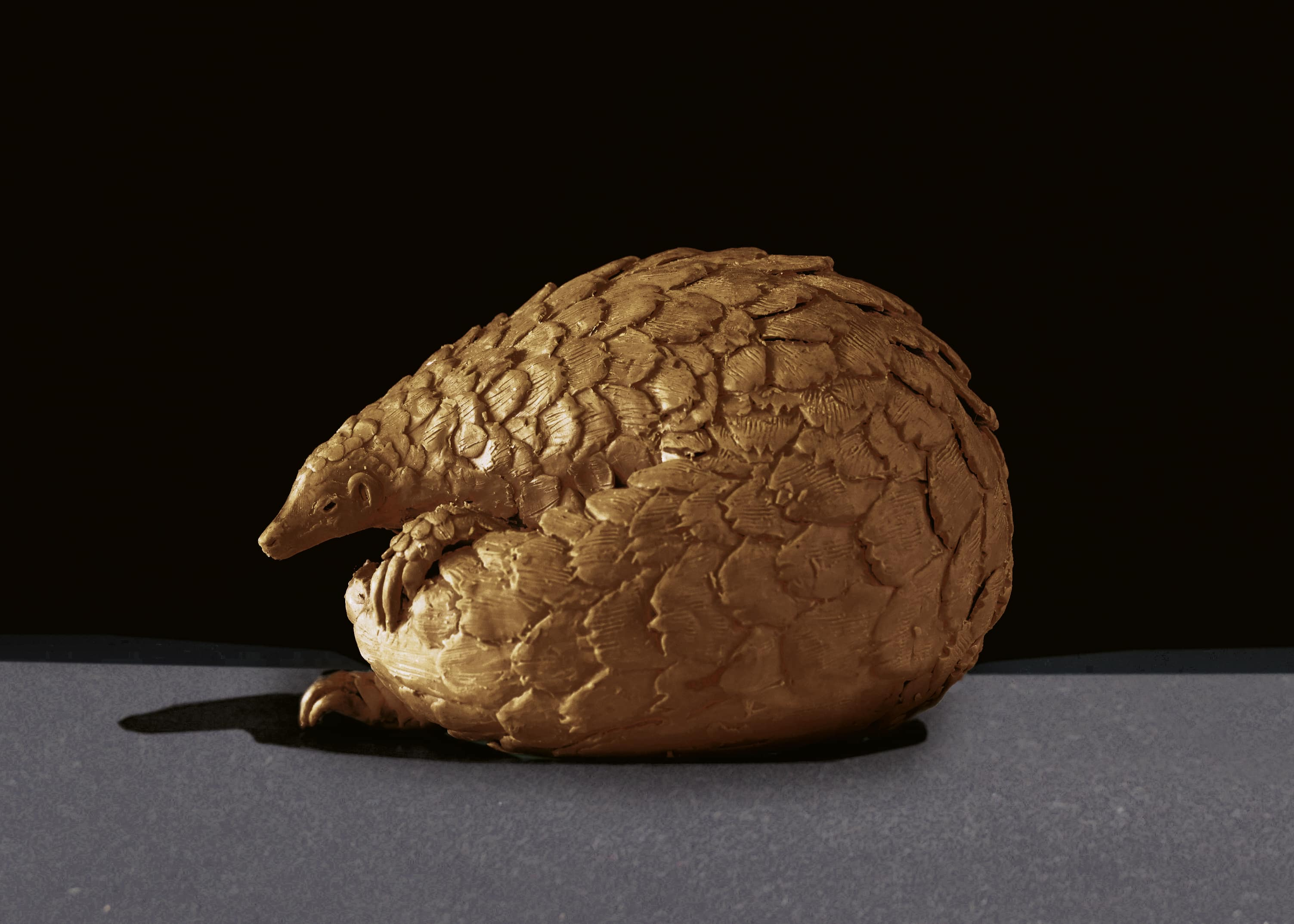 Bruce Little, bronze sculpture - Protective Armour – Pangolin