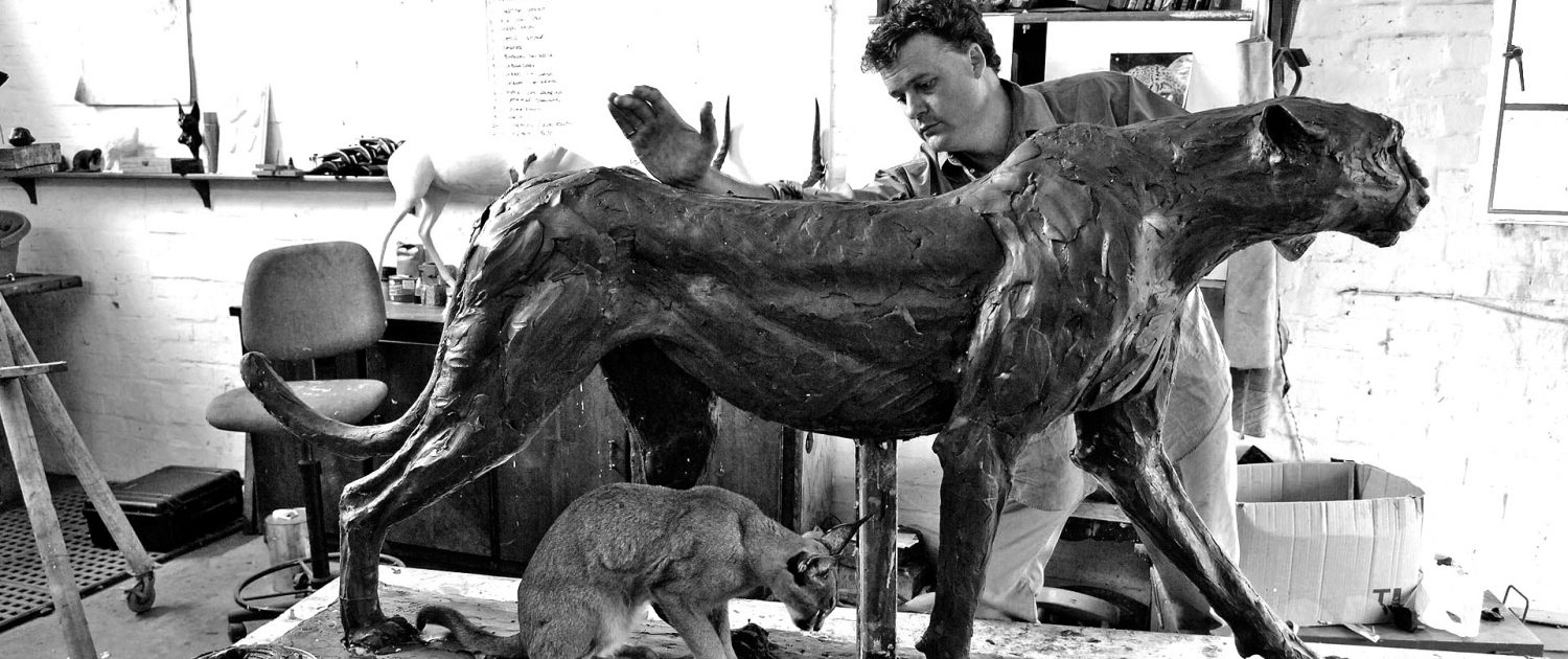Bruce little Bronze Wildlife Sculpture Sculptur Mold mould Cheetah kudu warthog conservation south africa southern Africa reserve studio self-taught art Grahamstown London Stellenbosch Gallery Patina Monumental lion Longleat Leonardo diCaprio Dawn patrol Artist Exhibition Artwork Eagle Hippo Buffalo Frog Leopard Baboon Elephant Rhino Rhinoceros Owl Tree Tree stump Spiritual enlightenment Hope Online Chomp Cliffhanger Cliff Climbing Concealed Down to earth Drinking Mobeni Waterhole Cape Animal Dangerous Marque Fabled Video Life sized Sculpting Photography Documentary Documenting Camera Running Amazing Beauty Portray Commission Ranger Archive Attitude Rubbing on tree Caracal Bust Guinea fowl Hunt Hunting Prey Predator Stalk Stalking Game Impala Cormorant Mammal Bird Feathers Wildcat Big cat Calf Big five Bull cow fish hawk raptor branch hippopotamus horse trotting canter gallop Labrador Pheasant Rock Lioness Cub Bee-eater Granite Twig Flock Wood Running Giraffe Carcass Family Wild dog Youth Youthful Exhuberance Mall galleries Contemporary Figurative Wilderness Beautiful Beautifully Figure Collection Animalian Spirit Life Drawing Sculpting En plein aire Instinctual Sculpts Subjects Champagne Celebratory Africa Conservationist Londolozi Singita Bushveld Prairie Eastern Cape Hopewell Ranch Veld Indigenous Farm Rehabilitation Rehabilitate rehabilitating rehabilitator preservation preserve anatomical anatomy movement observing observe behavior behaviour spirit casting cast smelt safari earth ceawlin thynn Viscount Weymouth United Kingdom Bubbly Larger than life Gala Foundation St Tropez Saint Tropez July September October 1 million USD United States Dollar Miniature Internationally Marquette Limited Private exclusive 11 years eleven years funds biography methods work working bush landscape portfolio oevre comprehensive inspiration empathy appreciation environment valuable relationship up close bonding bond brother work space scaffold ladder weld join joint clay modelling instinctive organic medium armature traditional shaping tools musculature texture surface animal skin form replica living outback latex mother mold foundry lost wax method measured process 2017 Mall Galleries 2016 Aynhoe Park 2016 Birdlife South Africa 2015 Mall Galleries 2013 Cork Street 2011 Cork Street 2009 Cork Street 2007 Cork Street 2005 Cork Street 2003 Johannesburg Biggest